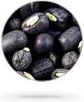 round_black_lentils