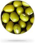 round_green_lentils